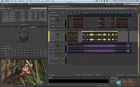 Скриншот программы Adobe Audition для Windows 8.1