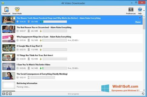 Скриншот программы 4K Video Downloader для Windows 8.1