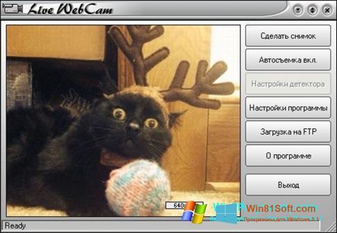 Скриншот программы Live WebCam для Windows 8.1