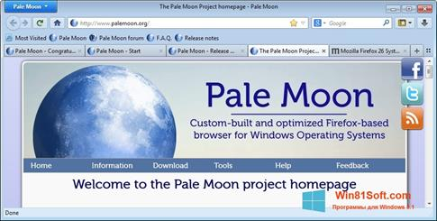 Скриншот программы Pale Moon для Windows 8.1