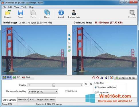 Скриншот программы RIOT для Windows 8.1