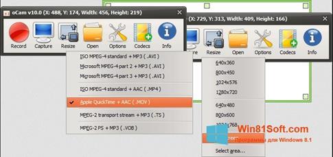Скриншот программы oCam Screen Recorder для Windows 8.1
