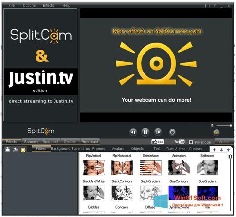 Скриншот программы SplitCam для Windows 8.1