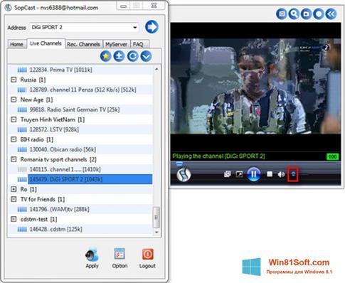 Скриншот программы SopCast для Windows 8.1