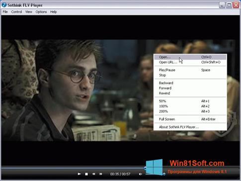 Скриншот программы FLV Player для Windows 8.1