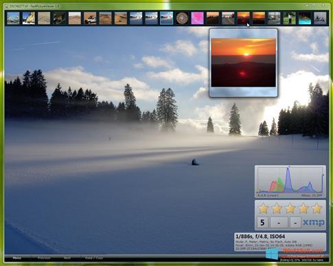Скриншот программы FastPictureViewer для Windows 8.1