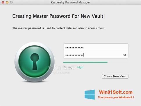 Скриншот программы Kaspersky Password Manager для Windows 8.1