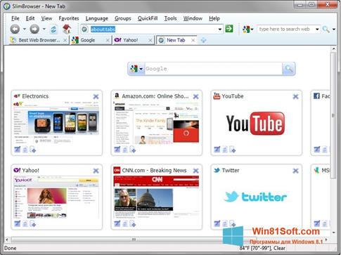 Скриншот программы SlimBrowser для Windows 8.1