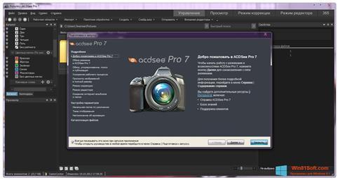 Скриншот программы ACDSee Pro для Windows 8.1
