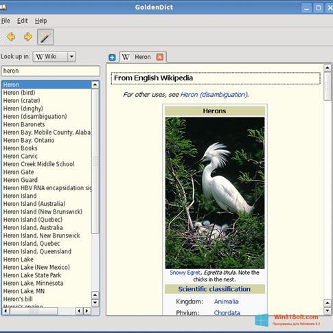 Скриншот программы GoldenDict для Windows 8.1