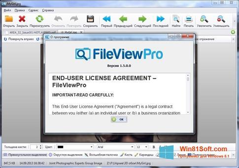 Скриншот программы FileViewPro для Windows 8.1