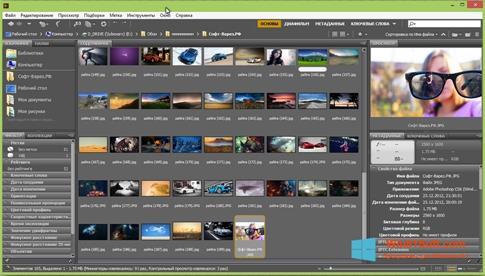 Скриншот программы Adobe Bridge для Windows 8.1