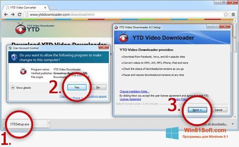 Скриншот программы YTD Video Downloader для Windows 8.1