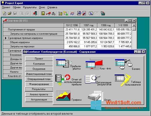 Скриншот программы Project Expert для Windows 8.1
