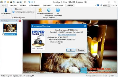 Скриншот программы HyperSnap для Windows 8.1