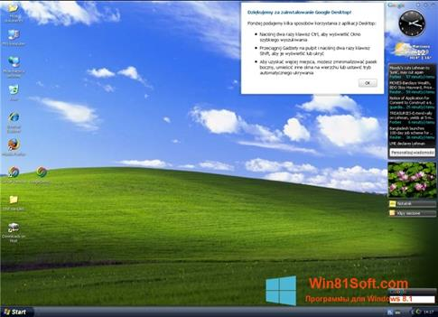Скриншот программы Google Desktop для Windows 8.1