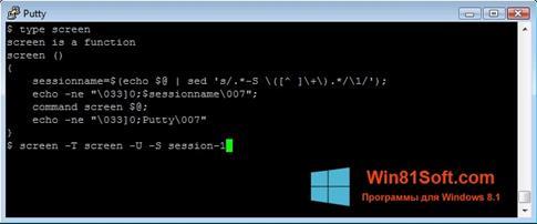 Скриншот программы PuTTY для Windows 8.1