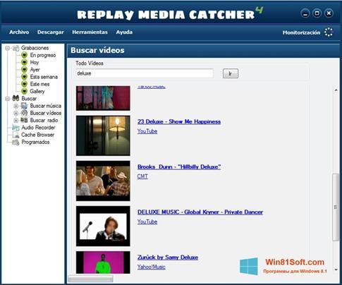 Скриншот программы Replay Media Catcher для Windows 8.1