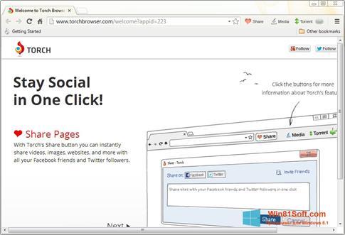 Скриншот программы Torch Browser для Windows 8.1