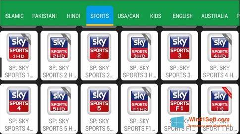 Скриншот программы Net TV для Windows 8.1