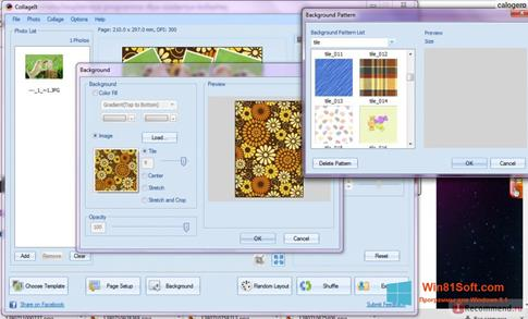 Скриншот программы CollageIt для Windows 8.1