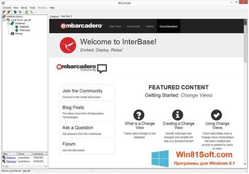 Скриншот программы InterBase для Windows 8.1