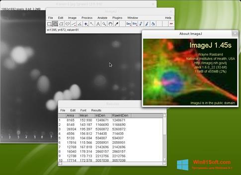 Скриншот программы ImageJ для Windows 8.1