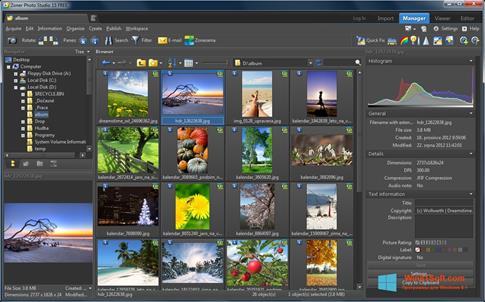 Скриншот программы Zoner Photo Studio для Windows 8.1