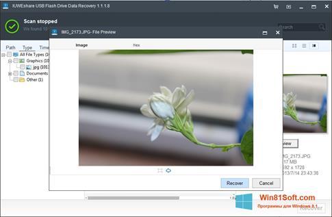 Скриншот программы USB Flash Drive Recovery для Windows 8.1