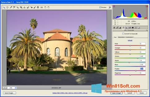 Скриншот программы Adobe Camera Raw для Windows 8.1