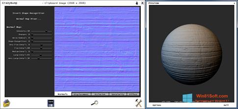 Скриншот программы CrazyBump для Windows 8.1