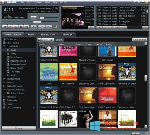 Скриншот программы Winamp для Windows 8.1