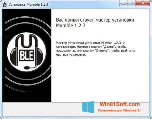 Скриншот программы Mumble для Windows 8.1