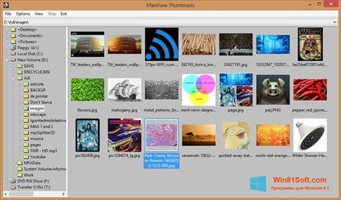 Скриншот программы IrfanView для Windows 8.1