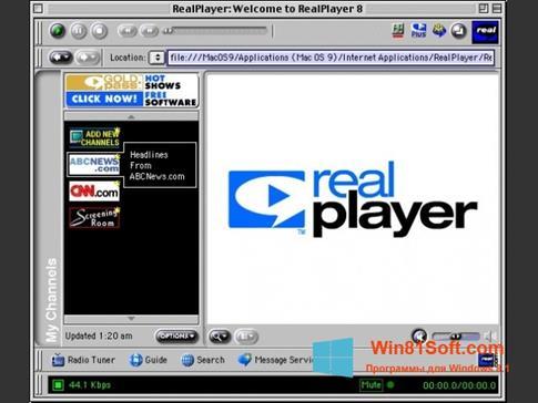 Скриншот программы RealPlayer для Windows 8.1